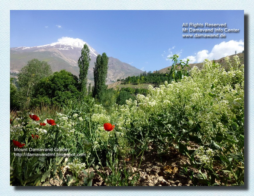 Natural Attraction of Mt Damavand Iran